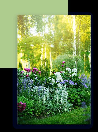 Garten im Sonnenlicht