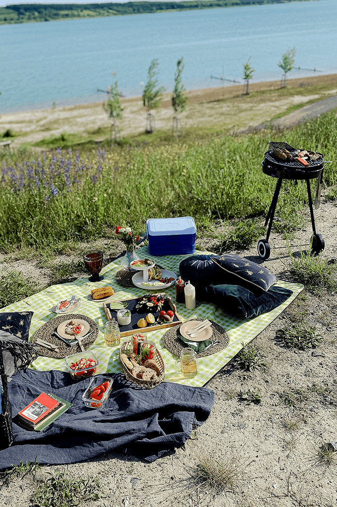 Categoria Come fare un barbecue?