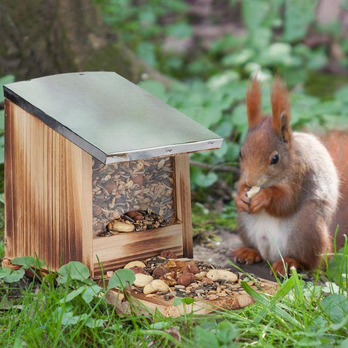 Kategorie Eichhörnchen Futterhäuser