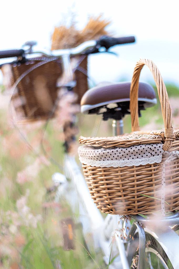 Kategorie Fahrrad-Saison