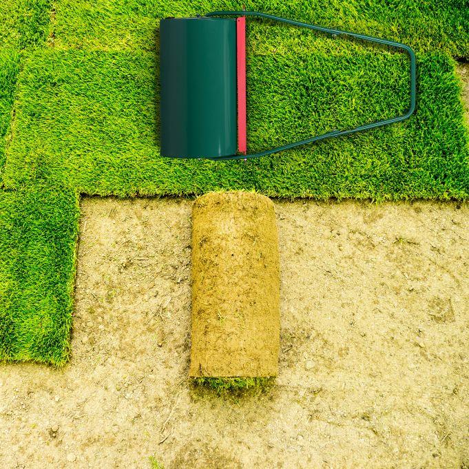 Kategoria Pielęgnacja trawnika