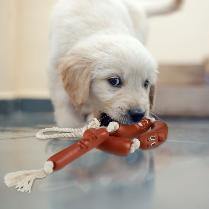 Sausage Rope Chew Toy for Dogs2